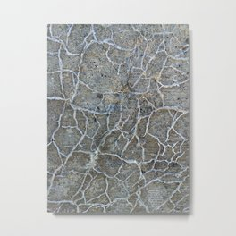 Dystopia: Rooted Concrete Metal Print