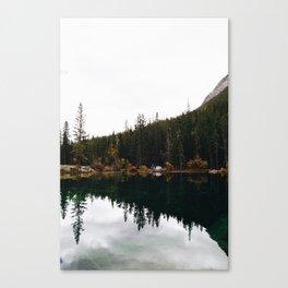 GRASSI 2 Canvas Print