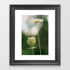 Wildflower 2 Framed Art Print