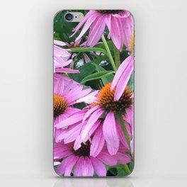 Pink Pop iPhone Skin