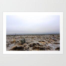 Chihuahuan Desert Under Ice Art Print