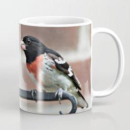 Male Rose-Breasted Grosbeak Coffee Mug