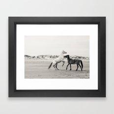 Wild Horses 5 - Black and White Framed Art Print