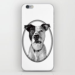 Pit Bull with oval frame iPhone Skin