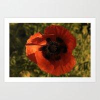 woodstock Art Prints featuring woodstock flowers by Teresa Gabry
