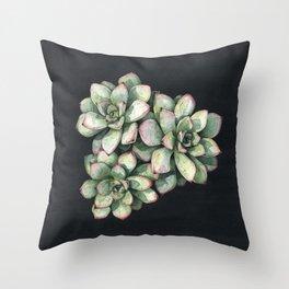 Echeveria Throw Pillow