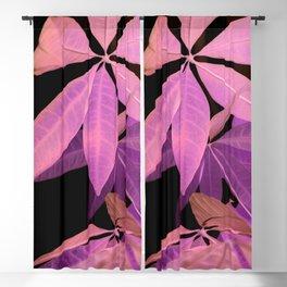 Pachira aquatica #2 #decor #art #society6 Blackout Curtain
