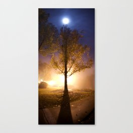 Smooth Collision Canvas Print