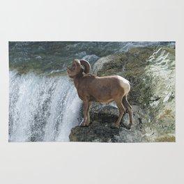 Big Horn Sheep & Rocky Mountain Waterfall Rug