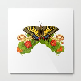 Old World Swallowtail Butterfly Metal Print