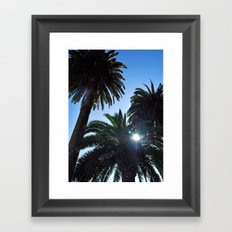 Ray of Sun through Palm Trees Framed Art Print