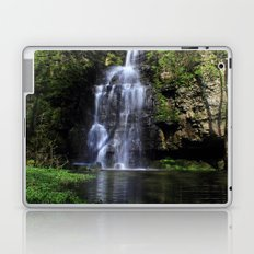 Swallet Falls Laptop & iPad Skin