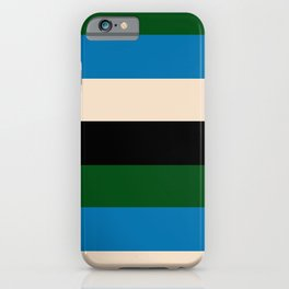 Color Stripe _003 iPhone Case