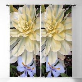 Giant white succulent Blackout Curtain