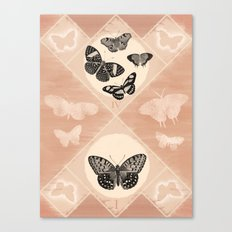 Fluttering in the Moonlight Canvas Print