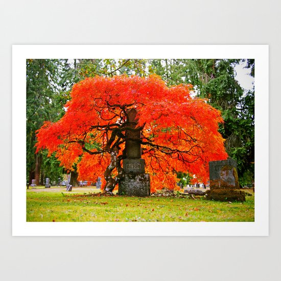 Beauty of Autumn Art Print