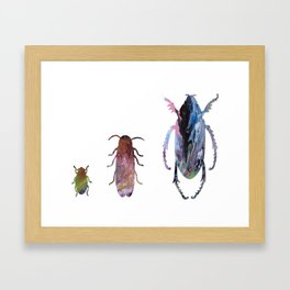 3 beetles Framed Art Print