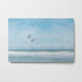 Terns in Flight, Truro Metal Print