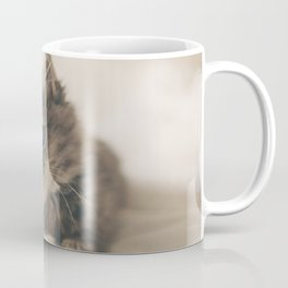 Dreaming Cat Coffee Mug