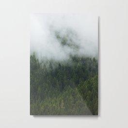 Tree Fog Metal Print
