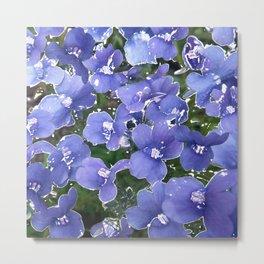 Violets 2 Metal Print