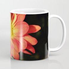 Pretty holiday orange daisy flower. Floral nature garden photography. Mug