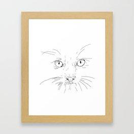 cat's eyes, drawing Framed Art Print