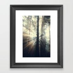 Lost In The Light Framed Art Print