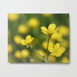 Golden Petals Metal Print
