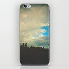 AA iPhone & iPod Skin
