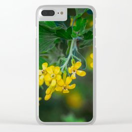 Yellow Blossoms 3 Clear iPhone Case
