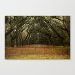 Enchanted Path Canvas Print