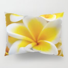Frangipani halo of flowers Pillow Sham