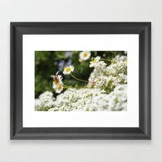 Small Happiness  Framed Art Print