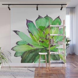 green succulent 2 Wall Mural