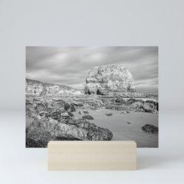 Marsden Rock, Whitburn Mini Art Print