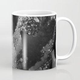 Rose: The Morning After Rainfall 2 Coffee Mug