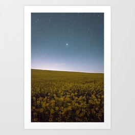 Fields of Yellow, Stars and Blue Art Print