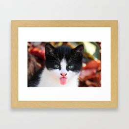 Cat Tongue Framed Art Print