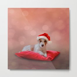 Jack Russell Terrier in red hat of Santa Claus Metal Print