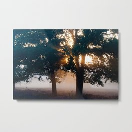 Sunrise on the heather. Metal Print