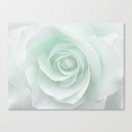 White Rose Minimalism | Mint Canvas Print