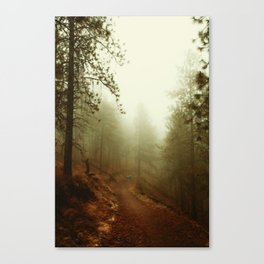 Autumn in Ponderosa Pines Forest Canvas Print