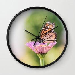 Monarch and a Zinnia Wall Clock