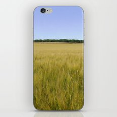 Cornfield Landscape iPhone & iPod Skin