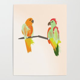 parrots, birds on a wire branch Poster