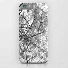 Untitle iPhone 6 Slim Case