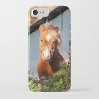 pony iPhone & iPod Cases featuring Pony by Linda Fields