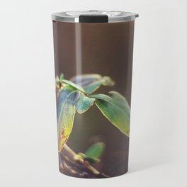 Holding On: A Winter Leaf Travel Mug