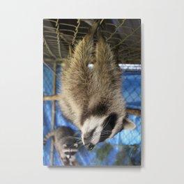 Hanger 1 Metal Print
